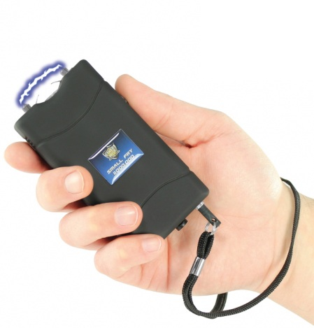 Small Fry Stun Gun, 8,800,000 Volts, Rechargeable, Black